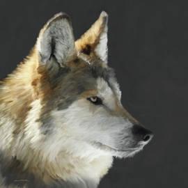 Ernie Echols - Mexican Grey Wolf Portrait Freehand