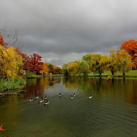 Michael Rucker - Michigan Autumn