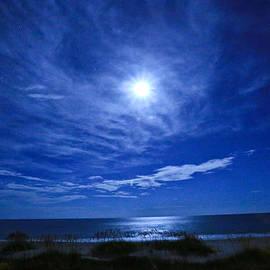 John Roberts - Midnight Moon