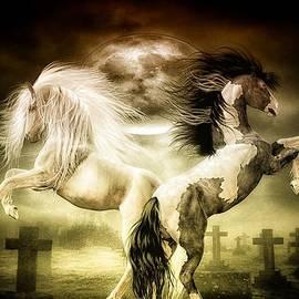 Todd and candice Dailey - Midnight Stallion