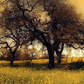 Leslie Hunziker - Might Oak