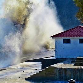 Rick Todaro - Mighty Crashing Waves Black Sea