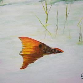 Georgie McNeese - Mikes Redfish