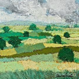 Allan P Friedlander - Mild Valley