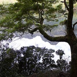 Venetia Featherstone-Witty - Mirror Lakes New Zealand