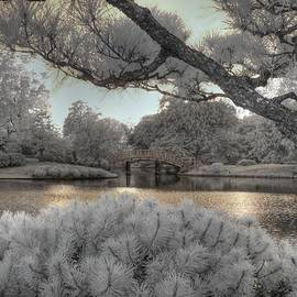 Jane Linders - Missouri Botanical Garden Bridge