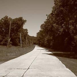 Frank Romeo - Missouri Route 66 2012 Sepia.