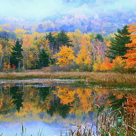 Roupen  Baker - Misty Autumn Pond