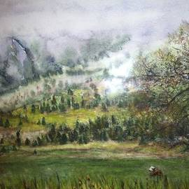 Carol Warner - Misty Morning in the Rockies