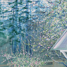 Asha Carolyn Young - Misty Morning with Apple Blossoms and Redwoods