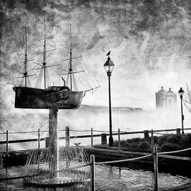 Renee Sullivan - Misty Savannah Sunrise - Black and White