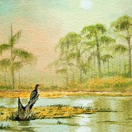Bill Holkham - Misty Sunrise At Wakulla