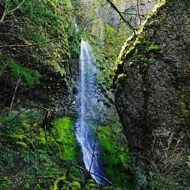 Jeff  Swan - Misty Waterfall