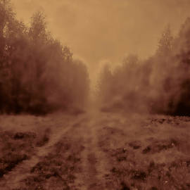 Leif Sohlman - Misty way imp bw-monochrome artistic rural way leading into the mist among trees