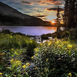 Steven Reed - Mitchell Sunrise