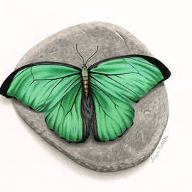 Sarah Batalka - Mito Awareness Butterfly- A Symbol Of Hope