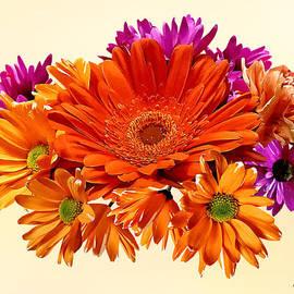 Susan Savad - Mixed Bouquet With Gerbera Daisy and Mums