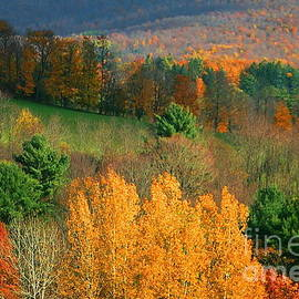 Marcel  J Goetz  Sr - Mohawk Trail Autumn Time