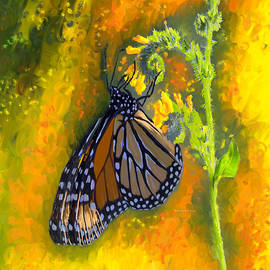 Angela A Stanton - Monarch Butterfly Migration