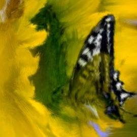 Bruce Nutting - Monarch in a Sunflower