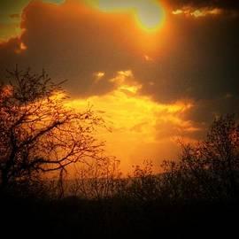 Joyce Kimble Smith - Monday Sunset