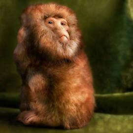 Diane Bradley - Monkey