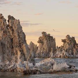 Tim Ai - Mono Lake - Tufa Formation