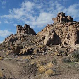 James Welch - Monolith Gardens Arizona