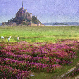 R christopher Vest - Mont St. Michel Flowers And Grazing Sheep
