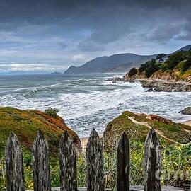 Amy Fearn - Montara State Beach