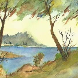 David Patrick - Monterey Cypress-Carmel