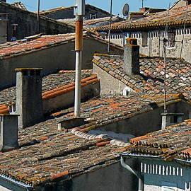 France  Art - Tile Rooftops of France