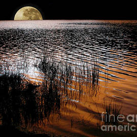 Kaye Menner - Moon catching a glimpse of Sunset