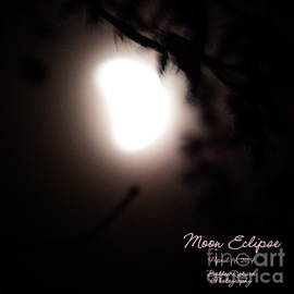 Bobbee Rickard - Moon Eclipse Captioned