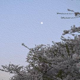 Sonali Gangane - Moon in Cherry blossom