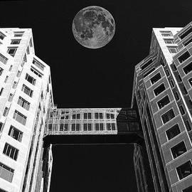 Samuel Sheats - Moon Over Twin Towers