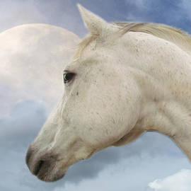 Shannon Story - Moon Spirit