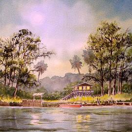 Bill Holkham - Moonlight Aucilla River Florida