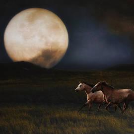 Ron  McGinnis - Moonlight Run