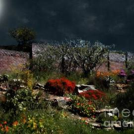 RC deWinter - Moonlit Hillside in Africa