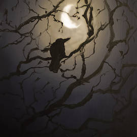 Melissa Herrin - Moonlit Perch