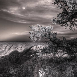 William Fields - Moonrise South Rim