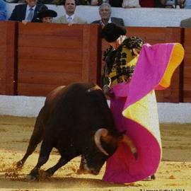 Bruce Nutting - Morante de la Puebla