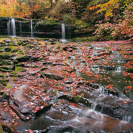 Gene Walls - More Moss And Autumn Leaves Than Water