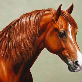 Crista Forest - Morgan Horse - Flame