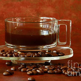 Inspired Nature Photography Fine Art Photography - Morning Coffee