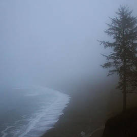 Robert Woodward - Morning Fog at Agate Beach