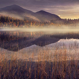 Magda  Bognar - Morning in Adirondacks