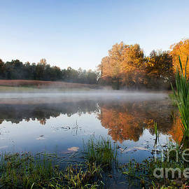 Joan McCool - Morning Mist on the Pond