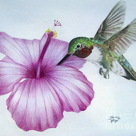 Rebecca Glaze - Morning Nectar
